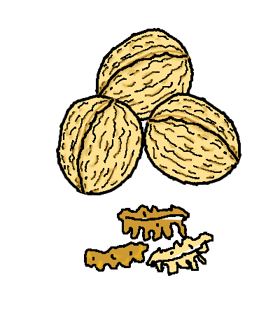 Pictograma de NUECES